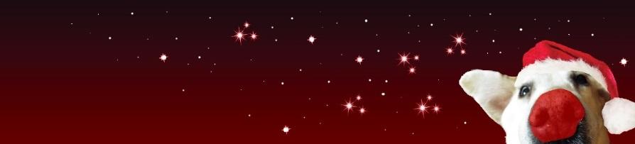 Christmas Twitter banner-2